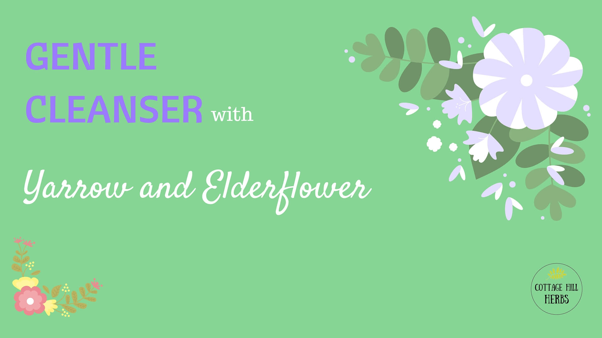 Yarrow and elderflower cleaner title image