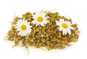 bigstock_Dried_Chamomile_Tea_4634563