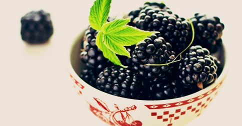 blackberry_fruit