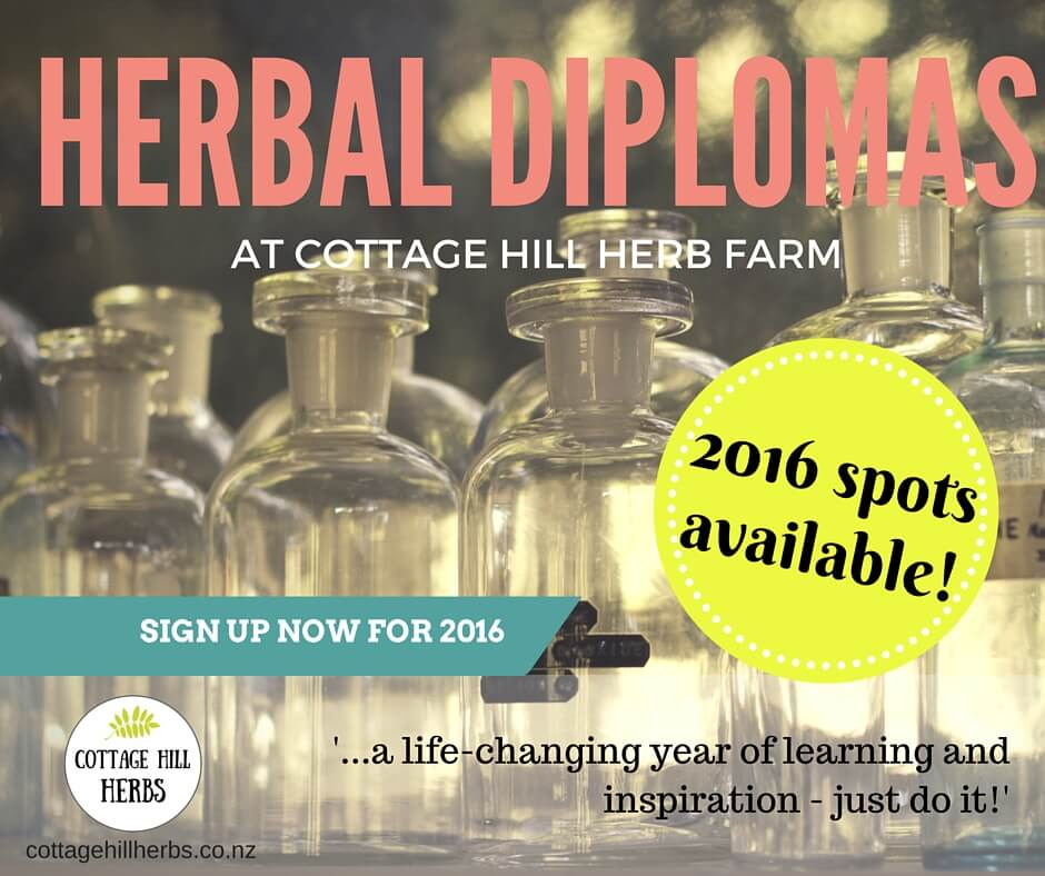 Herbal Courses ads 1