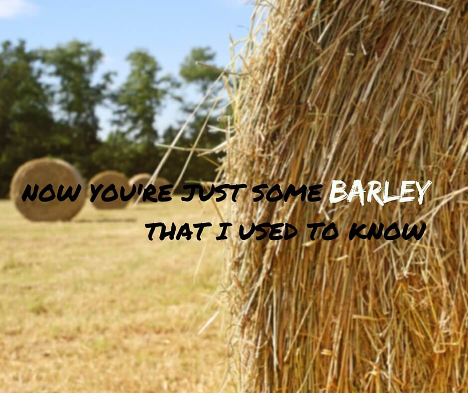Now you're just some barley