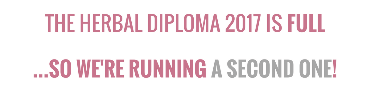 second-diploma-compressed